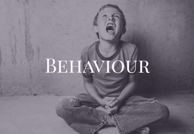 Behaviour Assessment