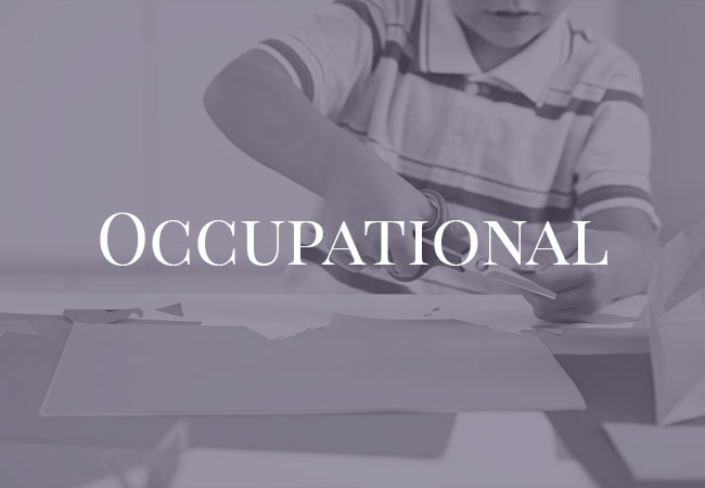 Occupational Assessment