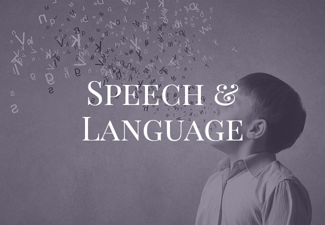 Speech and Language assessment